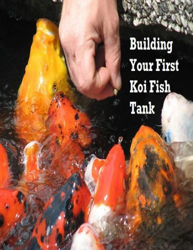 building a koi pond - 9