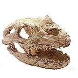 OMEM Natural Reptile Decorative Dinosaur Skull Hideaway Resin Made (L)