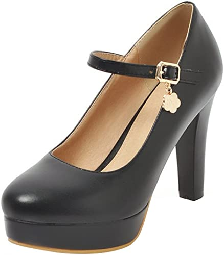 Women Mary Jane Shoes Pointed Toe Buckle Ankle Strap Dress Pumps Block High Heel