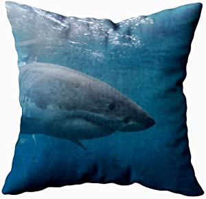 KIOAO 20X20 Pillow Case, Standard 20X20Inch Soft Square Throw Pillowcase Covers Fall Pillow Cover Great White Shark Neptune Islands South Australia Ocean Carcharias Printed with Both Sides,Halloween