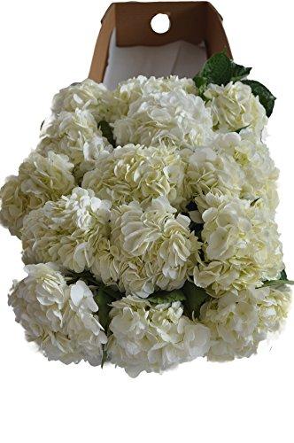 Review Farm2Door: 15 Fresh White