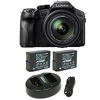 Panasonic LUMIX DMC-FZ300K, 4K Video, Splash & Dustproof Body, Leica DC Lens 24X F2.8 Zoom (Black) Bundle