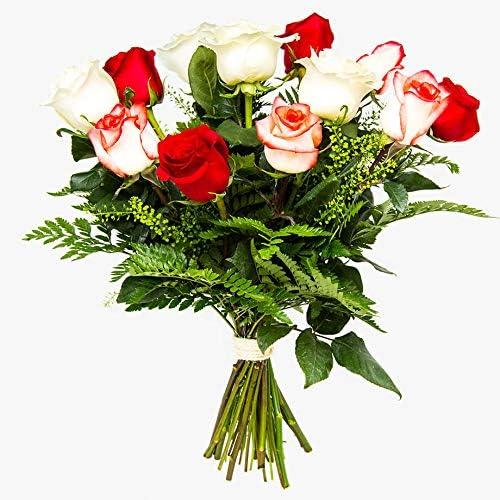 Plantas Semillas Y Bulbos Ramos De 12 Rosas Naturales A Domicilio Variado Túnez Envío A Domicilio 24h Gratis Tarjeta Dedicatoria Incluida Flores Frescas Caja Especial Para Ramos De Flores Naturales Jardín Aceautocare Net
