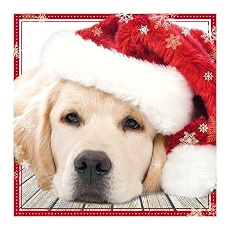 Foto Di Natale Con Cani.Susy Card 40003115 Biglietto Di Auguri Di Natale Effetto