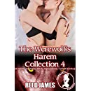 The Werewolf's Harem Collection 4: (A Harem, Succubus, Witch, Supernatural, Cuckold Erotica)