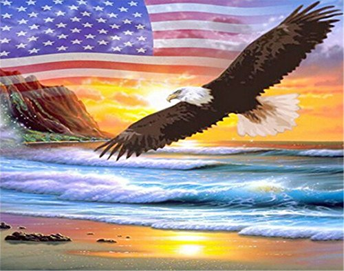 Kuwoolf 5D DIY Diamond Painting Crystal Eagle American Flag Cross Stitch Embroidery Animals Full Square Drill Diamond Pattern Home Decoration -D (Eagle Flag Embroidery)