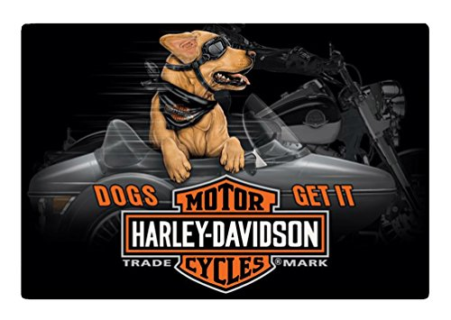 harley davidson dog accessories - 9