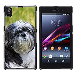 Etui Housse Coque de Protection Cover Rigide pour // M00117383 Shih Tzu perros canina mascotas // Sony Xperia Z1 L39 C6903 C6906 C6943 C6902