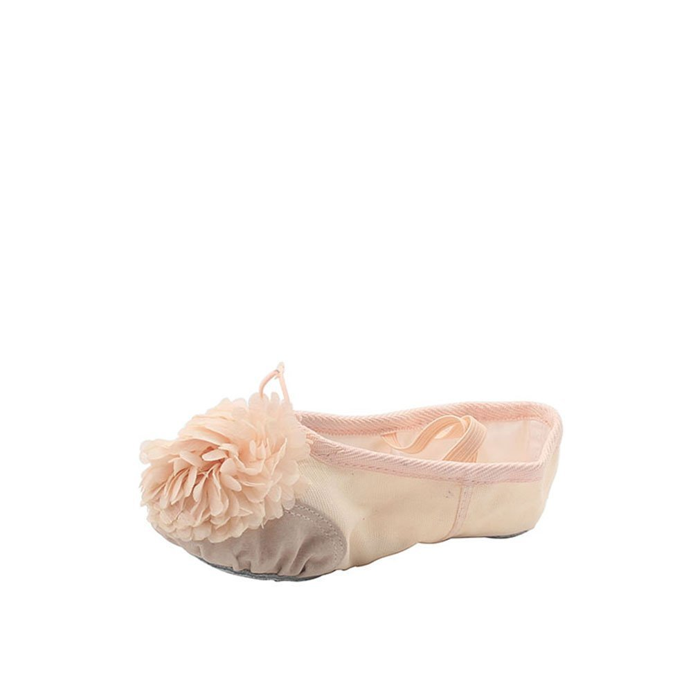 Woman's Canvas Ballet Dancing Shoes with Flower,Natural,8 M US