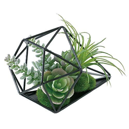 Time Concept Imitation Succulent Arrangement - Open Triangular Terrarium - Artificial Plant, Indoor & Outdoor Display, Home & Garden Decor ()