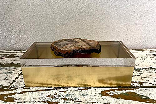 Fossil Candy - Petrified Wood and Gold, Thick Acrylic, Decorative Box, Storage, Candy or Gift Box, Handmade