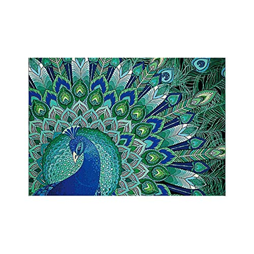 - RNTOP 5D Diamond Painting Kit Beauty Owl Peacock Special Shaped DIY Handmade Mosaic Diamond Embroidery Paintings Pictures Arts Craft for Home Wall Decor with Accessories Tools Set 30x40cm (C)
