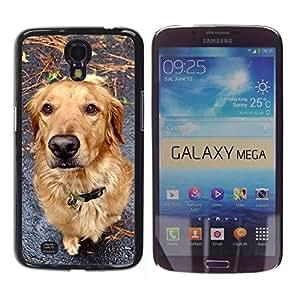 Be Good Phone Accessory // Dura Cáscara cubierta Protectora Caso Carcasa Funda de Protección para Samsung Galaxy Mega 6.3 I9200 SGH-i527 // Golden Retriever Autumn Fall Dog Canine