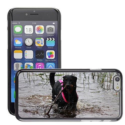 """Just Phone Cases Hard plastica indietro Case Custodie Cover pelle protettiva Per // M00127764 Chiot beauceron Pet animal mignon // Apple iPhone 6 PLUS 5.5"""""""
