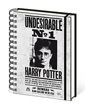 Amazon.com : Harry Potter - Notebook/Journal / Organizer ...