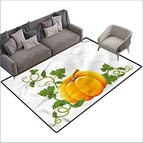 (Polyester Non-Slip Doormat Rugs Colorful Pumpkin,Ripe Fruit Autumn Harvest 60