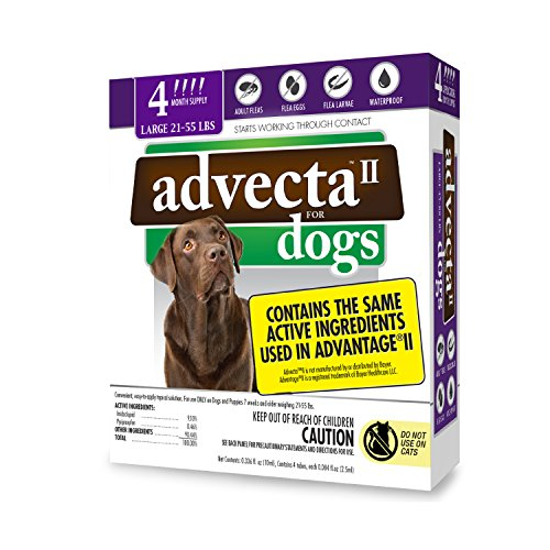Four Month Supply (Advecta II Flea Treatment - Flea and Lice Prevention for Dogs, 4 Month Supply)