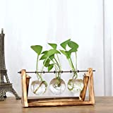 Fishinnen Home Decoration Glass Vase with Stand, Creative Hydroponic Plant Trans Vase Wooden Frame Coffee Shop/Wedding Garden/Home Decoration