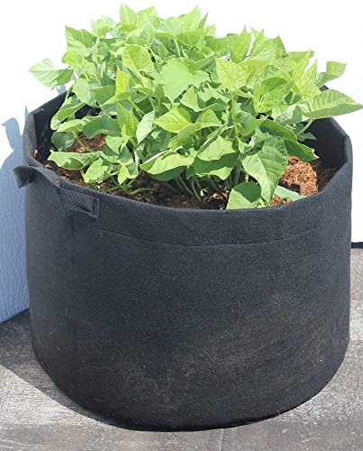 5 Pack 10 Gallon Plant Grow Bag, Aeration Fabric Pot with Handles for Nursery, Garden and Outdoor, Eco Friendly Heavy Duty Seedlings Pot by DynaPot, Black by EcoGreenText