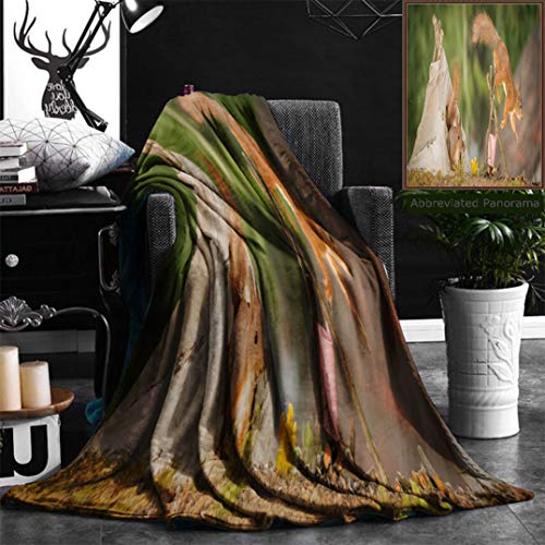 "Nalagoo Unique Custom Flannel Blankets Young Red Squirrel In A Tee Pee With A Fire Place With Older Squirrel Jumping Of With Blurry Super Soft Blanketry for Bed Couch, Throw Blanket 50"" x 60"" by Nalagoo"