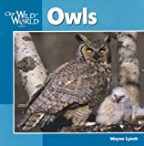 Owls, Wayne Lynch, 155971915X