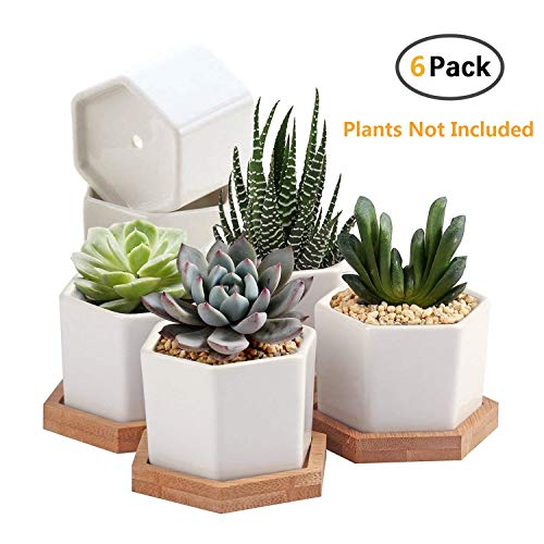 Succulent Planter,OAMCEG 2.75 inch Succulent Plant Pots,Set of 6 White Ceramic Succulent Cactus Planter Pots with Bamboo Tray(Plants NOT Included)