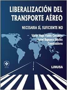 LIBERACION DEL TRANSPORTE AEREO. -NECESARIA SI, SUFIC. NO-: VALDES