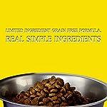 51KEiPXupAL. SS150  - Zignature Turkey Dry Dog Food