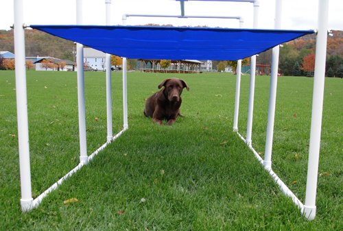 Affordable Agility Practice Crawl Tunnel