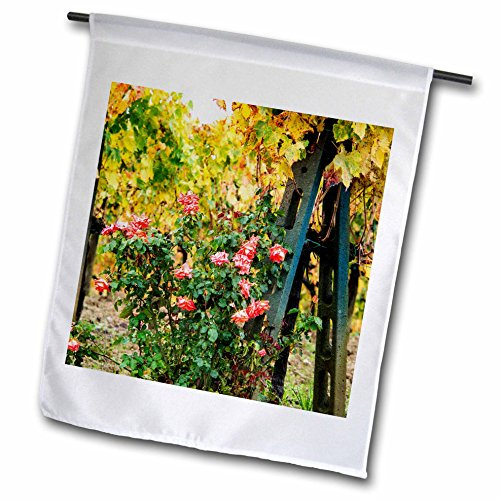 Vineyards Rose - 3dRose Danita Delimont - Vineyards - Italy, Tuscany, Autumn Vineyards and Roses growing at end of rows - 12 x 18 inch Garden Flag (fl_277679_1)