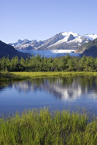 - View Of Mendenhall Glacier With Pond And Green Grass In Foreground Juneau Southeast Alaska Summer Poster Print (11 x 17)