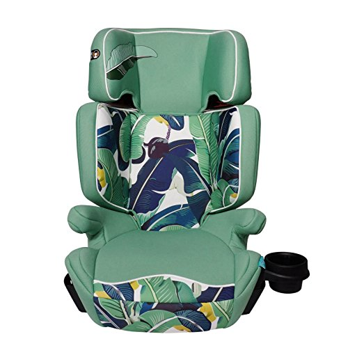 Aidia Explorer 2-in-1 Safety Booster Car Seat, Green Blue