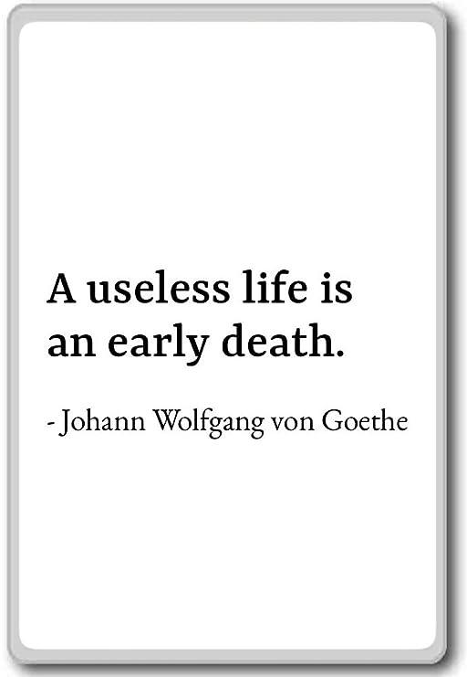 Amazon De Eine Unnützes Leben Ist Eine Frühe Tod Johann