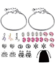 DIY Charm Bracelet Making Kit, Girls Craft Jewelry Making Supplies Charm Bracelet Jewellery Making Kit Silver Plated Bead Snake Chain Jewelry Set Easter Birthday Gifts for 8-12 Year Old Girls Teens