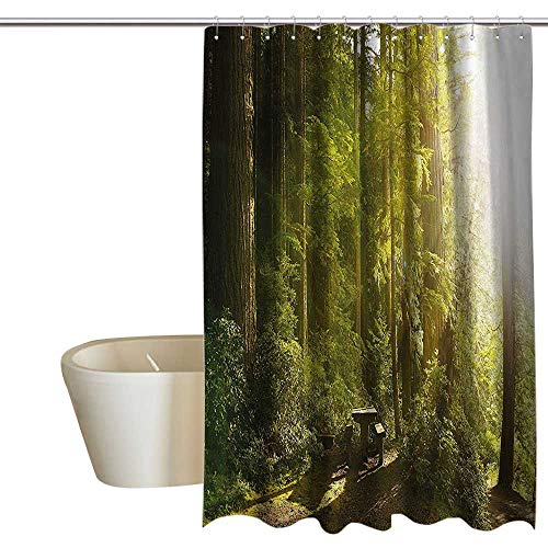 - Anshesix Nature Mildew Resistant Fabric Shower Curtain Sunny Rainforest with Wood Bench in Olympic National Park Washington USA Photo Waterproof partition Curtain 72