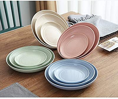 Lightweight &Unbreakable Wheat Straw Plates 4 Pack, Non-Toxin Healthy Eco-Friendly Degradable Dishes, BPA free plates,Dishwasher Microwave Safe Plates,Reusable Plate for Fruit Snack Container.