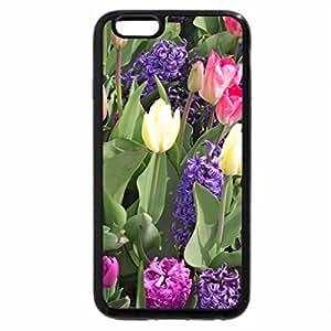 iPhone 6S Plus Case, iPhone 6 Plus Case, colorful spring garden
