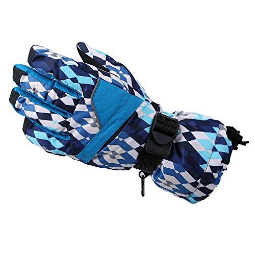 Gloves Waterproof Windproof Weather Snowboard