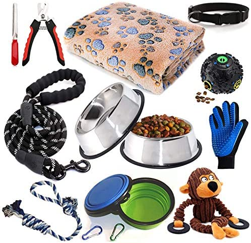 Puppy Starter Piece Supplies Assortments product image