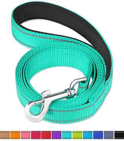 FunTags 6FT Reflective Dog LeashSoft Padded Handle for TrainingWalking Lead for Large Medium & Small Dogs
