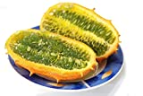 buy Kiwano, Horned Melon seeds - Cucumis metuliferus now, new 2020-2019 bestseller, review and Photo, best price $6.73