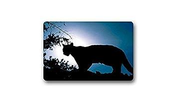 Wie ist es, eine Cougars zu datieren