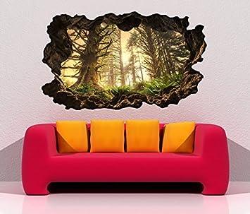 3d Wandtattoo Durchbruch Dschungel Regenwald Wald Sonne Wand