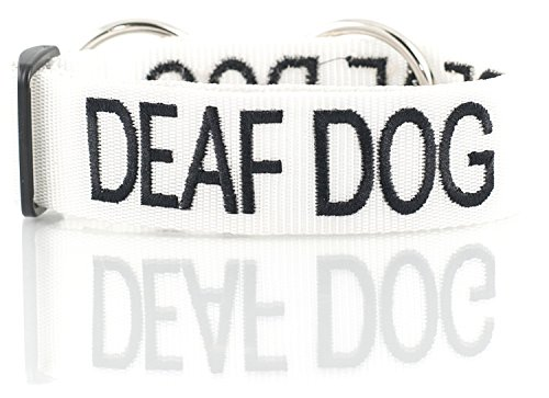 DEAF DOG White Color Coded L-XXL Semi-Choke Dog Collar (No/Limited Hearing) PREVENTS Accidents By Warning Others of Your Dog in Advance