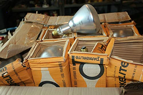 24 Flood light bulbs Parkerlite Telepro BR40 100 watt 120-130v super hilite bulb
