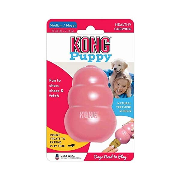 KONG – Puppy Toy