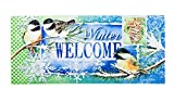 Evergreen Winter Welcome Decorative Mat Insert, 10 x 22 inches