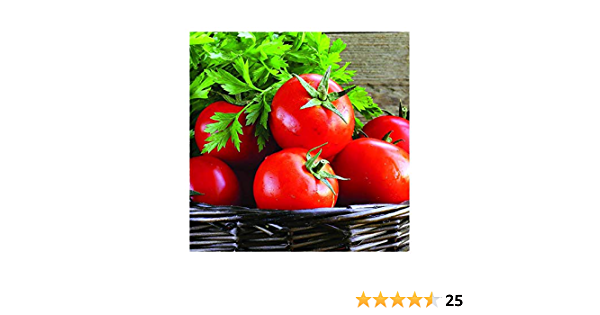 PREMIER SEEDS DIRECT Tomato Outdoor Girl 125 Finest Seeds Early Maturing