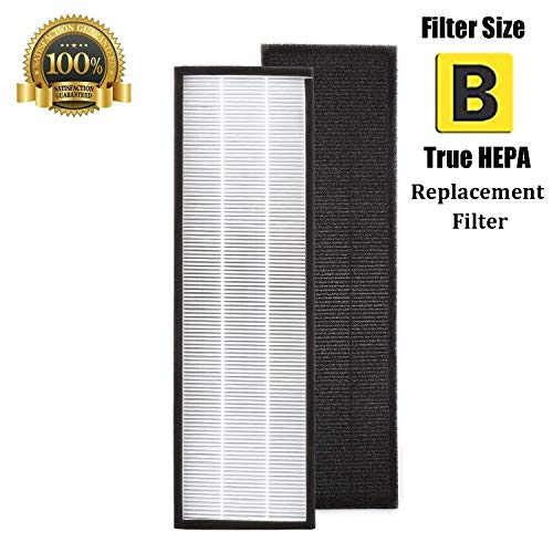 FLT4825 Filter B True HEPA Replacement Filter Compatible for GermGuardian AC4825, AC4825E, AC4300BPTCA, AC4850PT, AC4900CA, CDAP4500BCA, CDAP4500WCA, PureGuardian AP2200CA and Black & Decker BXAP148