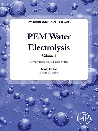 PEM Water Electrolysis (Hydrogen and Fuel Cells Primers Book 1)
